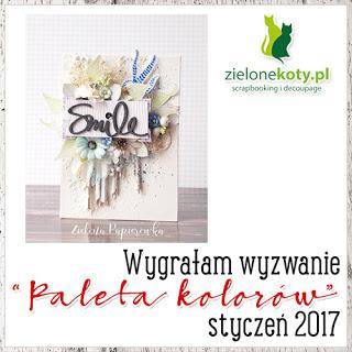 Wygrałam wyzwanie sklepu ZieloneKoty.pl
