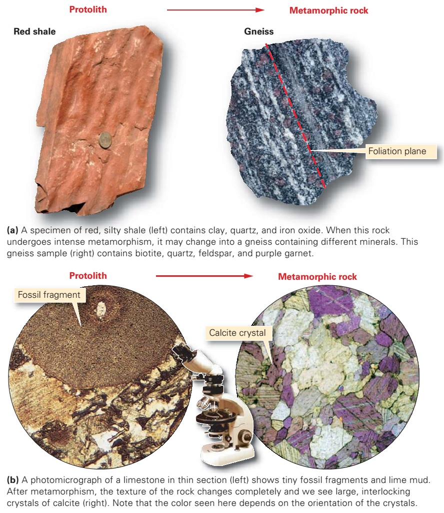 Consequences And Causes Of Metamorphism Learning Geology