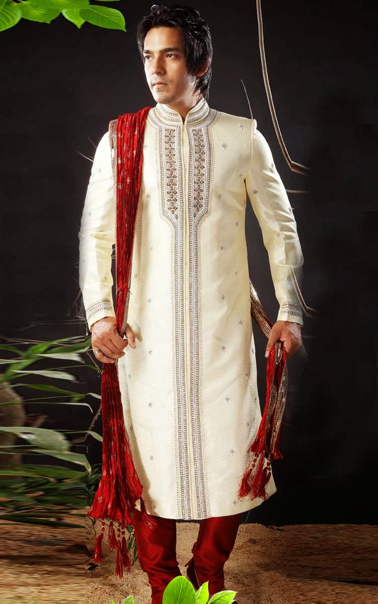 Fashion Plannet: the new indian wedding dress for mens 2014