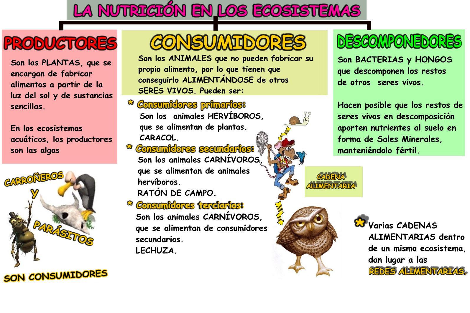 nutricion ecosistemas