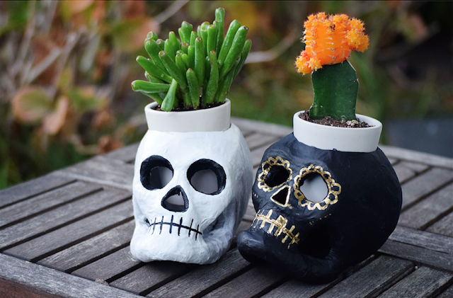 DIY Sugar skull succulent planter