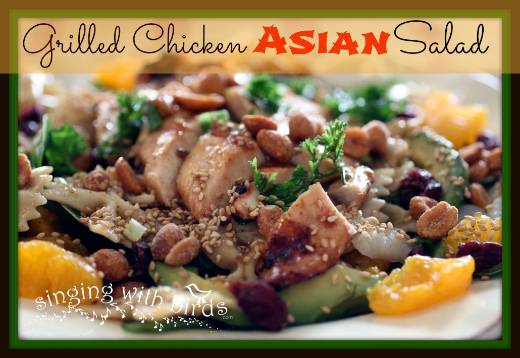Singing With Birds: Grilled Chicken Asian Salad