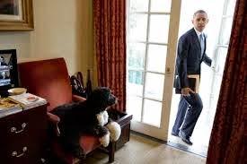 http://wallstcheatsheet.com/politics/where-will-obama-go-after-the-white-house.html/2/