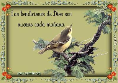 Frases de Dios | Frases de Dios para reflexionar, Frases