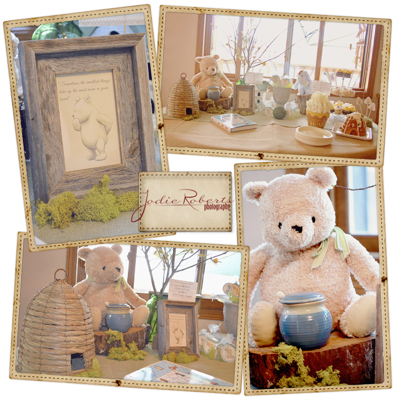 jodie roberts photography classic winnie the pooh baby shower