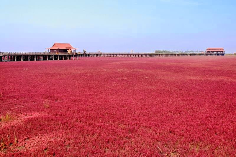 The Red Beach Pier, Panjin, China