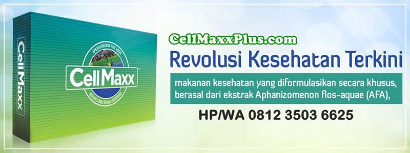 CELLMAXX INDONESIA  | 08123 5036625  | - Alamat Agen Harga Jual