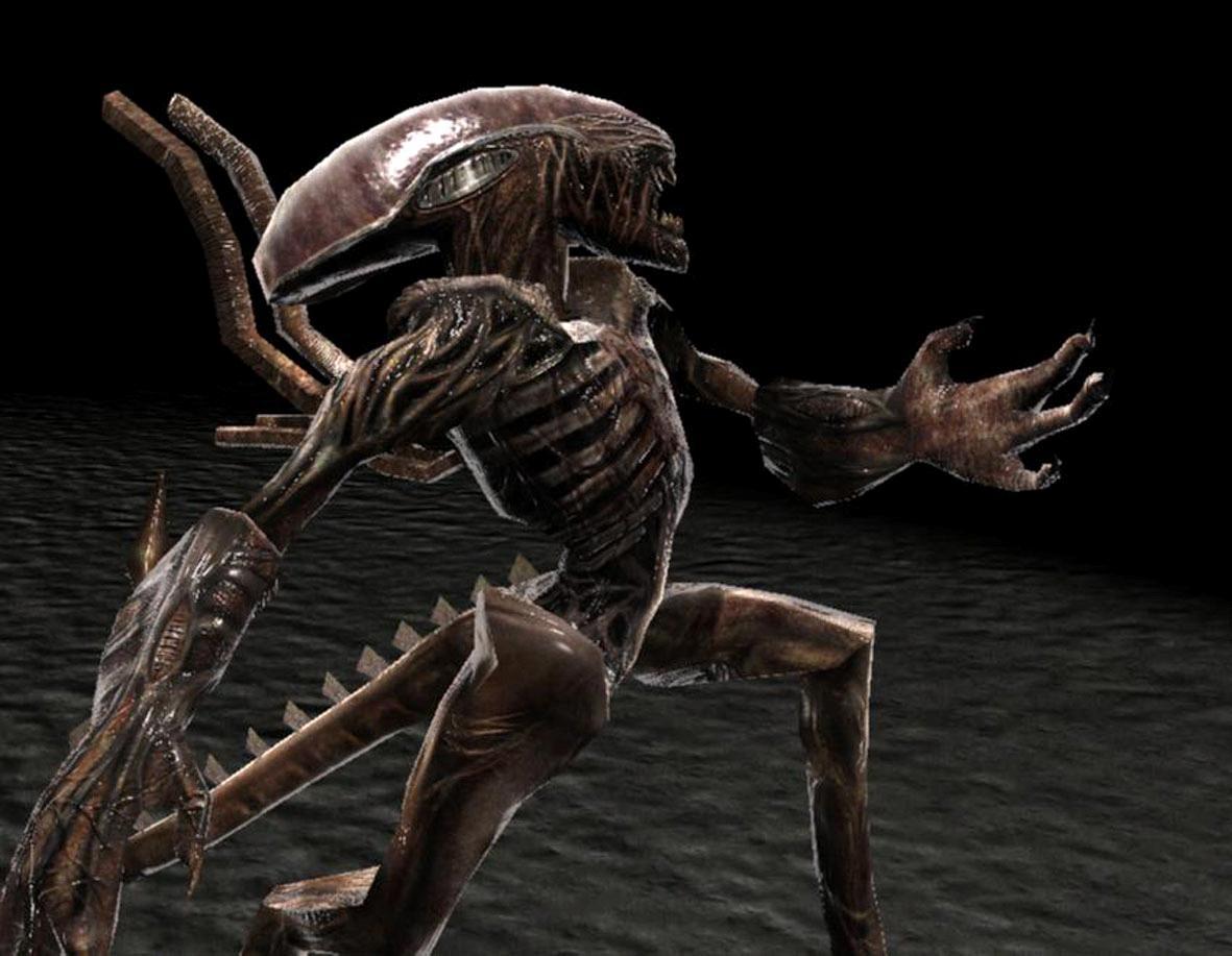 Dan orang-orang yang mengatakan pernah melihat alien mengatakan bahwa