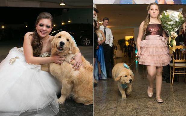 festa-de-15-anos-animais-de-estimação-cachorro
