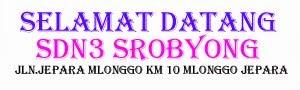 SD Negeri 3 Srobyong