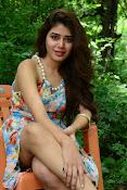 New actress Aarti Chhikara glam pics-thumbnail-13