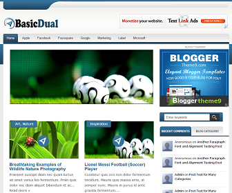 BasicDual Blogger Template