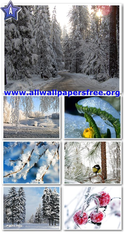 40 Beautiful Winter Wallpapers 1280 x 1024