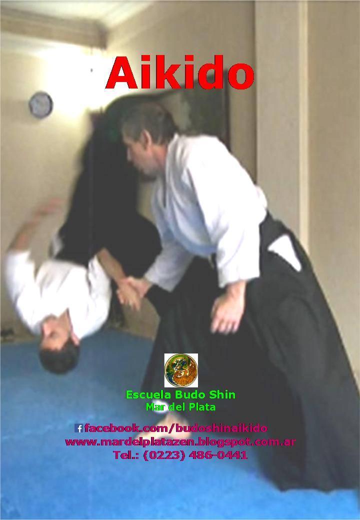 Aikido en Budo Shin