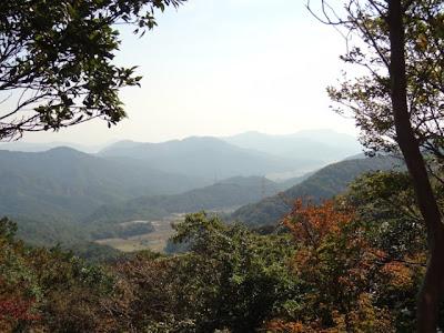 山門水源の森絶景