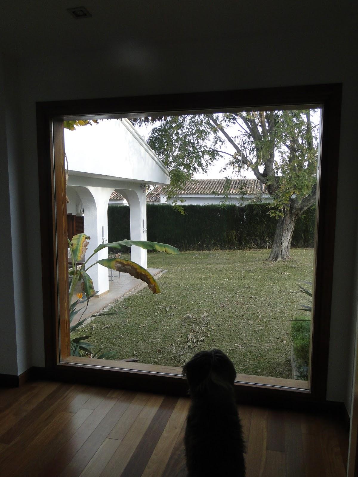 Planos low cost pasillo con luz natural - Casas con luz natural ...