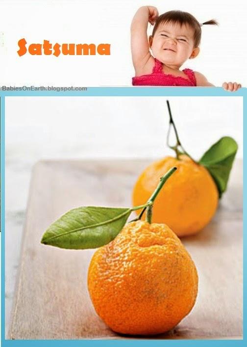 Baby Satsuma
