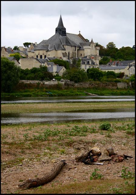 Candes Saint Martin France July 2011