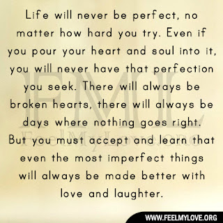 Life will never be perfect, no matter how hard you try