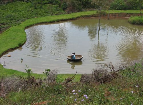 Different between natural man made ponds for Design of farm pond ppt