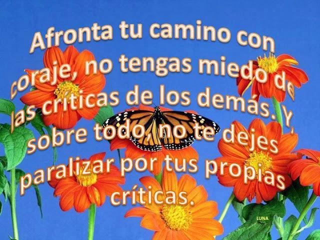 Afronta tu camino con coraje, no tengas miedo de las críticas de los demás. Y, sobre todo, no te dejes paralizar por tus propias críticas