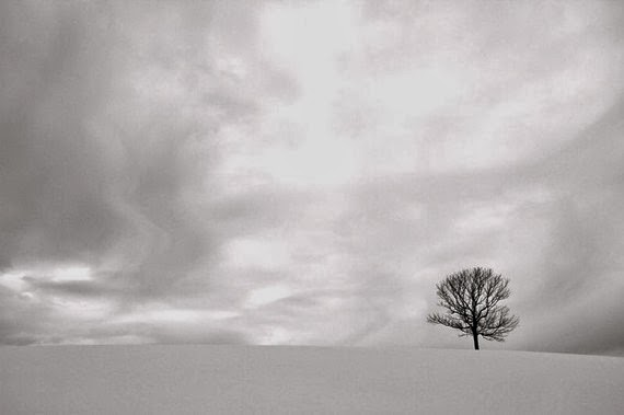 https://www.etsy.com/listing/66311439/winter-landscape-photography-snow-calm?ref=favs_view_1