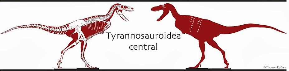 Tyrannosauroidea central