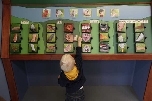 Defining Interactive Children's Exhibits: Why Touch Screens and Technology Aren't Enough