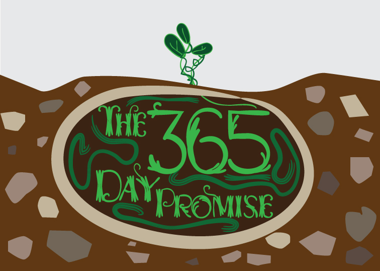 The 365 Day Promise
