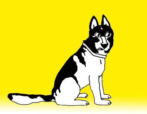Copcão - o cão policial
