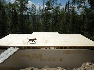 Ely lake home, http://huismanconcepts.com/