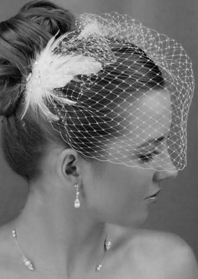 Cheap Birdcage Veil