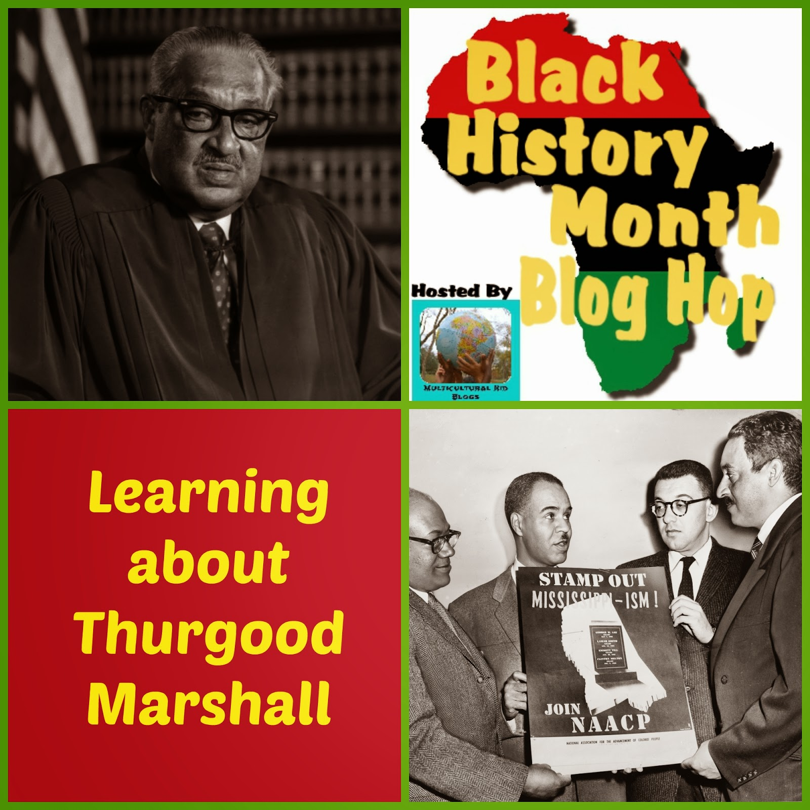 an introduction to the history of naacp Lesson 2: naacp history introduction and objectives lesson 2 objective at the completion of this lesson, you will be able to: describe the history of the naacp.