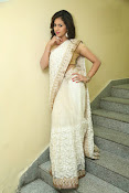 gowthami chowdary glamorous in saree-thumbnail-13