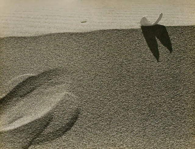 nuncalosabre.Fotografía. Photography - Kansuke Yamamoto