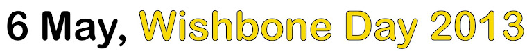 6 May, Wishbone Day 2013