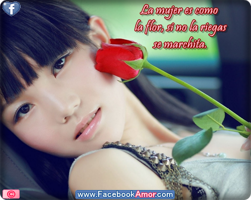 Frases con imagenes bonitas de rosas - YouTube