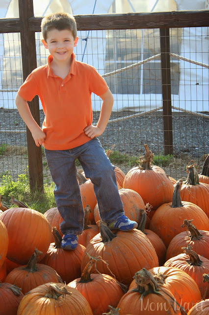 Posing at the Pumpkin Patch
