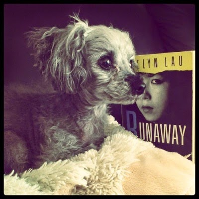 Murchie lays on his sheep-shaped pillow, face towards the right side of the frame. The shot is fairly close; almost, but not quite, a profile. Behind him sits a paperback copy of RUNAWAY. Its cover features a black and white photograph of a young girl of Chinese descent, her face slightly turned towards the viewer.