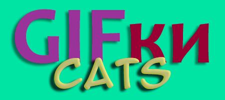 Гифки про кошек (25 гифок)
