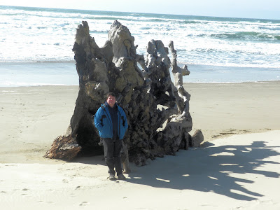 photo of bob and driftwood on bay ocean spit