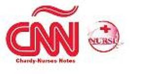CNU to hold first int'l nursing confab