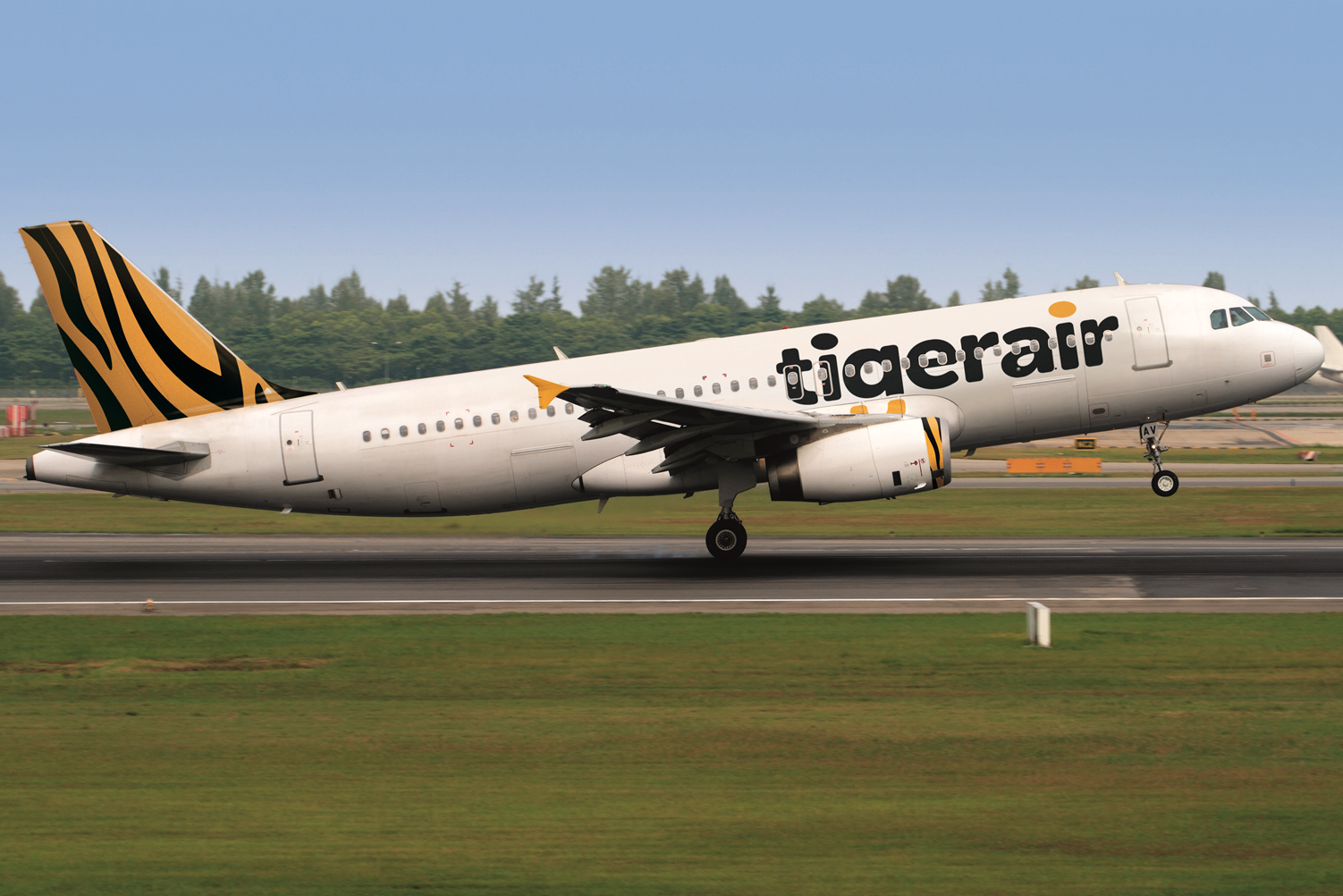 political factor in tiger airways Pest analysis on tiger airways essays and research political factors political factors deal with the degree to which the government influences and controls.