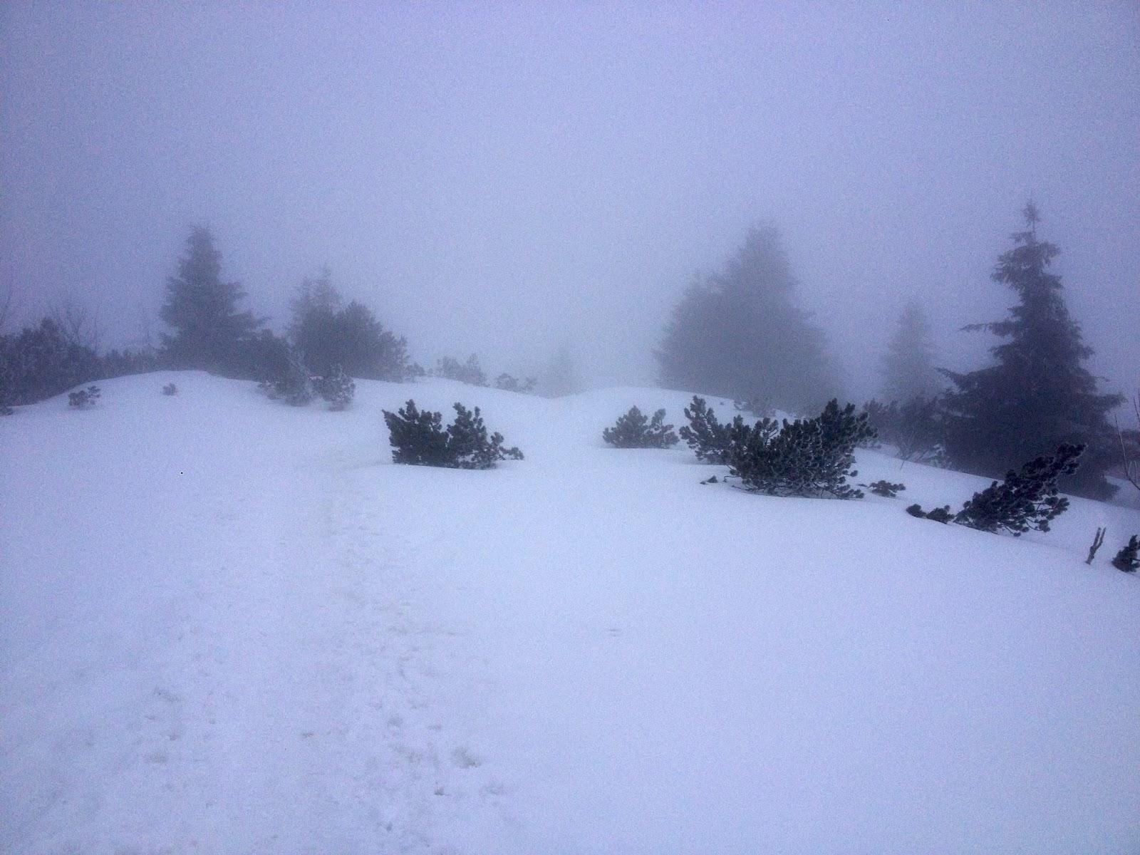 Winterwanderung Hirschberg 05