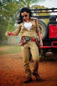Nisha Kothari latest photos gallery-thumbnail-19