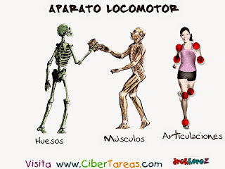 http://www.edu.xunta.es/espazoAbalar/sites/espazoAbalar/files/datos/1285230863/contido/index.html