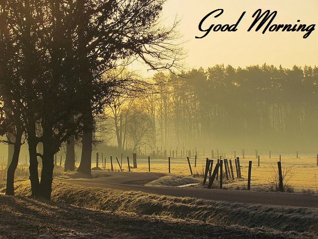 Good Morning Nature Image : Good morning nature ecards sexy photos images festival