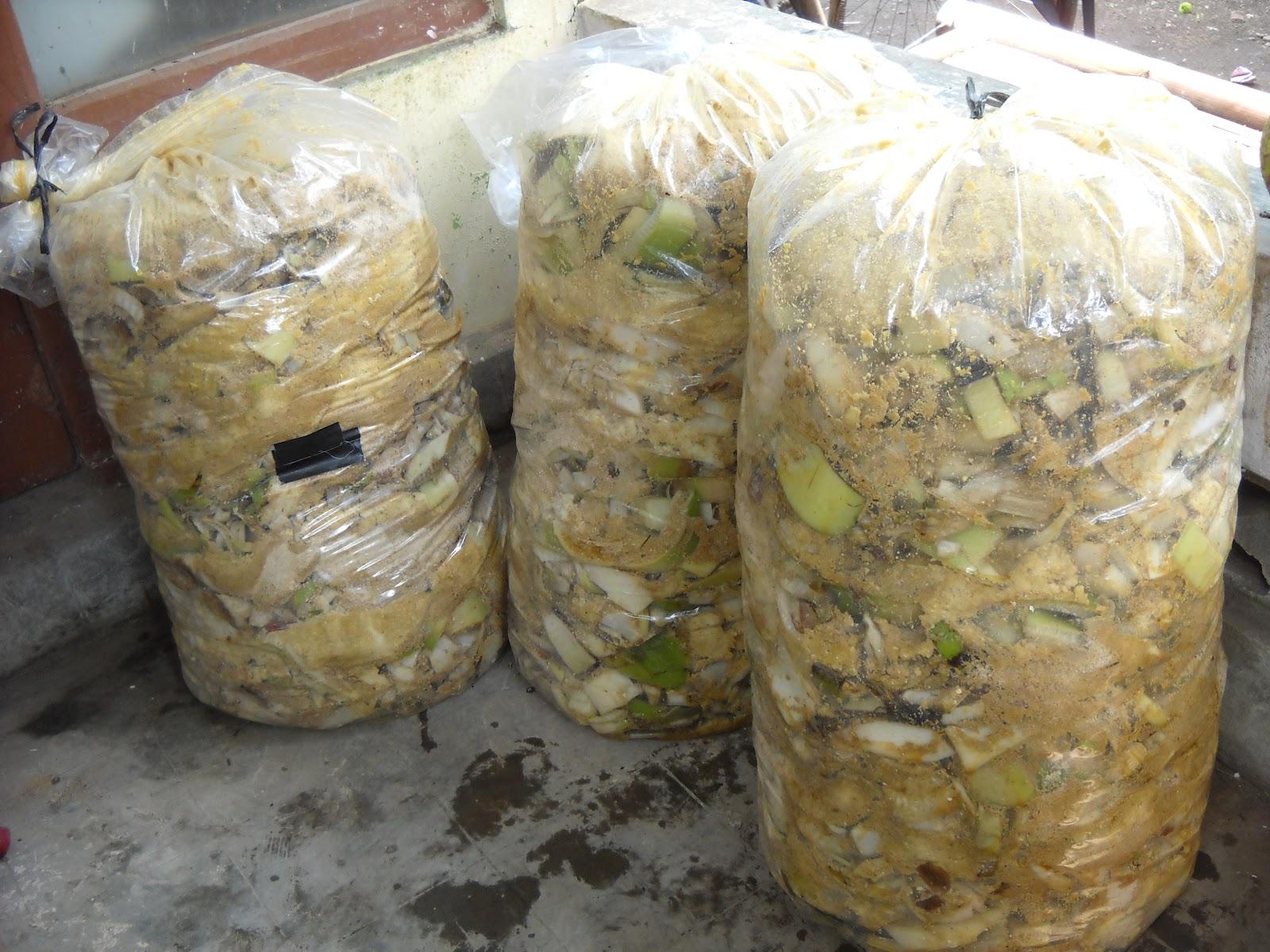 Pakan Ternak | STOCKIST HCS|Pertanian Organik|Pupuk Cair Organik ...