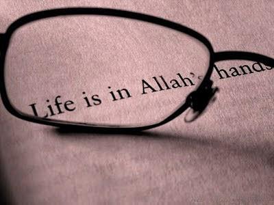 artikel motivasi, takdir, artikel takdir, menyikapi takdir, hikmah takdir, hikmah kejadian, hikmah kehidupan, artikel motivasi, artikel motivasi islami
