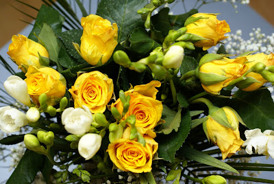 yellow roses rose flower pictures 350